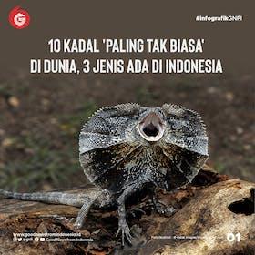 Gambar sampul 10 Kadal Paling Unik di Dunia, 3 dari Indonesia
