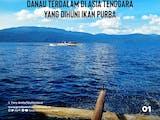 Gambar sampul Danau Matano, Danau Terdalam di Asia Tenggara yang Dihuni Ikan Purba