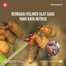Gambar sampul Kuliner Ulat Sagu yang Ternyata Kaya Nutrisi