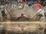 Gambar sampul Sumatera Barat Menjadi Tuan Rumah Festival Pesona Budaya Minangkabau