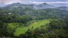 Inilah Homestay dan Desa Wisata Terbaik di Indonesia
