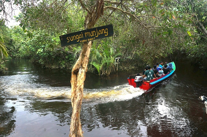 Pulau Bangka tak Sekadar Timah, Ada Ekowisata Mangrove dan Penangkaran Penyu, Seperti Apa?