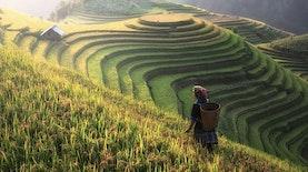 Ukir Penghargaan di SVC Asia 2017. Startup Menuju Peningkatan Mutu Agraris Indonesia