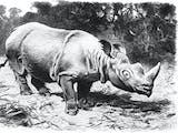 Gambar sampul Menjaga Situs Warisan Dunia yang Ada Badaknya, Juga Bunga Rafflesia