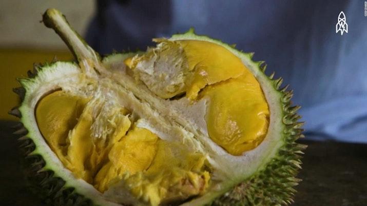 Durian Asal Bangka Ini Dijual dengan Harga 300ribu! Apa Istimewanya?