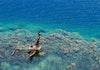 5 Keajaiban Papua yang Mungkin Belum Anda Ketahui