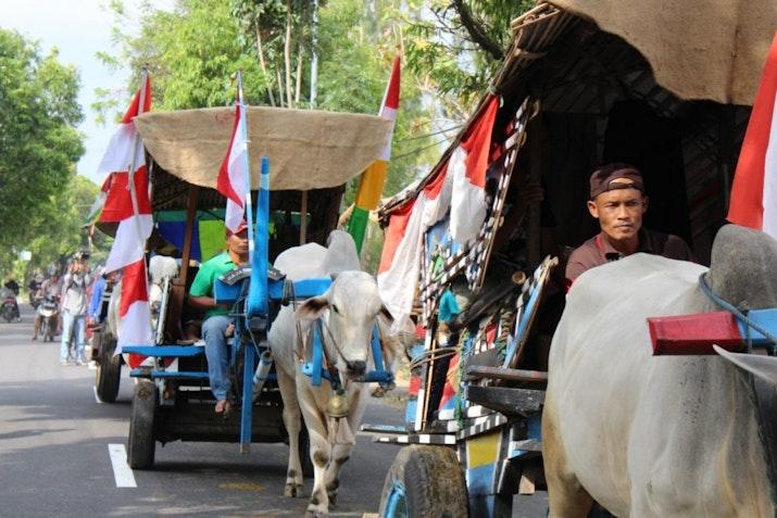 Bajingan Dan Festivalnya Di Indonesia