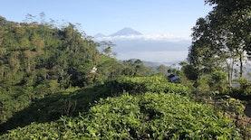 4 Destinasi Wisata Baru Yogyakarta Mulai Dikembangkan