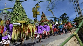 Festival Panen Tembakau Ala Desa Senden