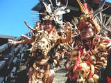Gambar sampul Pesta Dayak Tahunan, Ajang Silaturahmi Indonesia-Malaysia