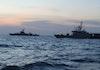 Temuan Spesies Hewan Baru Hasil Ekspedisi Laut Jawa