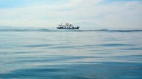 Cerita Data: Mewujudkan Kegiatan Perikanan Laut Berkelanjutan