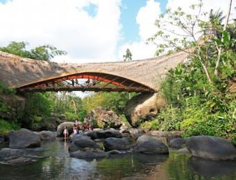 Wow Sekolah Alam ini Sepenuhnya Terbuat dari Bambu!