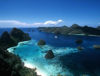 Bagaimana Bentuk Otak Raksasa di Kedalaman Perairan Indonesia?