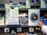 Gambar sampul Pertama Kalinya, Ilmuwan Indonesia Memetakan Genom Corona SARS-CoV-2