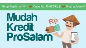 Kredit Pro Salam from 8villages Helps Farmer to Expand Business with Bank Loan