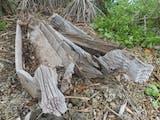 Kuburan-Kuburan yang Berkisah, Penanda Sejarah dan Budaya Kepulauan Batu
