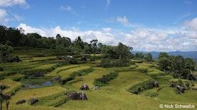Sulawesi, Penyumbang Terbesar Pertumbuhan Ekonomi Indonesia