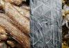 Indonesia Siap Melawan Plastik dengan Singkong dan Rumput Laut