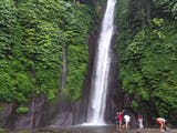 Gambar sampul Trekking di Tengah Aroma Kopi dan Cengkeh di Bali Utara