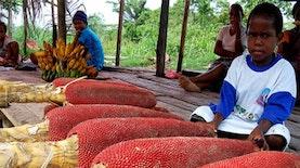 5 Buah Khas Papua yang Memiliki Banyak Khasiat