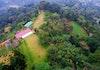 Penanaman Ribuan Pohon di Puncak Bogor