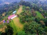 Gambar sampul Penanaman Ribuan Pohon di Puncak Bogor