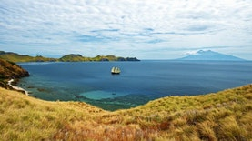 Ada Indonesia! Ini 10 Pulau Pribadi Terbaik yang Ada di Dunia