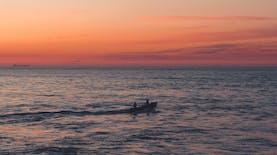 Aplikasi Lautan Nusantara Buatan Indonesia, Permudah Nelayan Tangkap Ikan