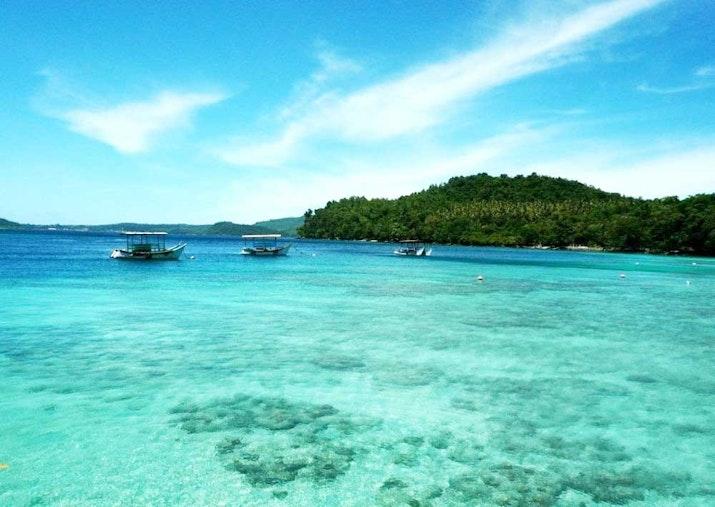 Wow Ikan Kerapu Berukuran Raksasa Ditemukan di Aceh