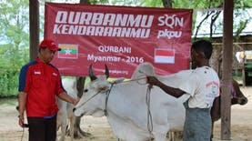 Dorong Pemerataan Penyaluran Daging Qurban, Kitabisa.com Gagas Qurban.Kitabisa.com