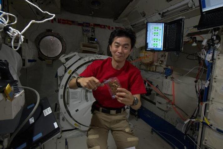 Astronot Jepang Terpesona dengan Indonesia dari Luar Angkasa