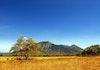 Pesona Menakjubkan Taman Nasional Baluran Sebagai Africa Van Java