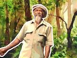 Gambar sampul Alasan Mbah Sadiman Tanam Pohon Beringin untuk Hijaukan Lereng Gunung Lawu