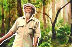 Alasan Mbah Sadiman Tanam Pohon Beringin untuk Hijaukan Lereng Gunung Lawu
