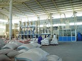 Gambar sampul Jakarta Punya Mesin yang Bisa Naikkan Produksi Beras?