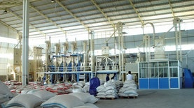 Jakarta Punya Mesin yang Bisa Naikkan Produksi Beras?
