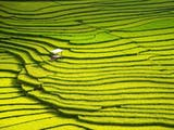 Gambar sampul [FOTO] Daftar Destinasi Foto Perjalanan Terbaik Dunia 2017