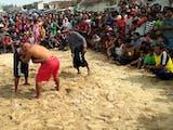 Gambar sampul Pathol, Olahraga Tradisional Gulat dari Pesisir Pantai Jawa