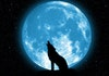 Ada Fenomena Langka 'Supermoon' Sekaligus Gerhana Bulan di Indonesia, Catat Waktunya!