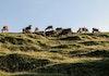 Menanti Senja di Bukit Merese, Kuta Mandalika