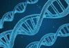 Merayakan Kebergaman Lewat Tes DNA