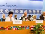 Gambar sampul Terpilihnya Guru Besar Indonesia Menjadi Wakil Ketua Komisi Pangan Dunia