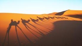 Bendera Perusahaan Indonesia ini Berkibar secara penuh di Gurun Sahara, 16.000 km dari Indonesia