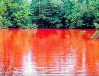 Unik Atau Mistis, Danau di Bengkulu Berwarna Merah Darah