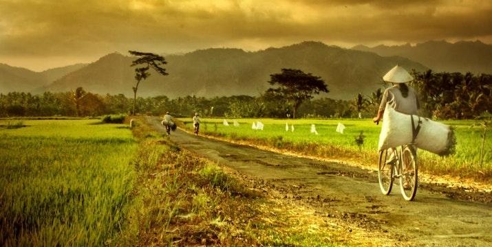 23 Negara Tiru Sistem Dana Desa Indonesia