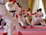 Gambar sampul Atlet Karate Indonesia Raih 3 Medali di Ceko