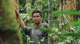 Berdayakan Desa Tanpa Rusak Hutan, Pria Kapuas Hulu Raih Penghargaan Internasional