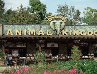 Indonesia menjadi Inspirasi dalam Pembuatan Wahana Taman Hiburan Disney.