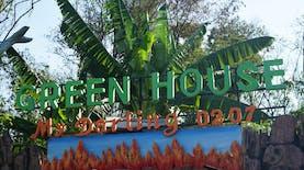 Panen Gotong Royong di Green House My Darling Kampung Pulosari